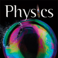 PHYSICS HOLT BOOK